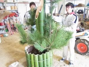 松の枝の位置や高さの確認をしています。