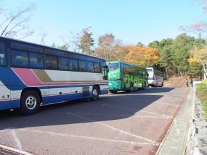 今回はバス3台。