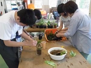緑化システムコース(植物のテラリウム)